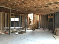 Basement Framed In Stair View