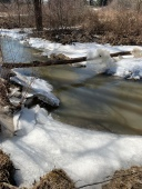 Creek begins to thaw and run